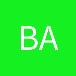 BadSky