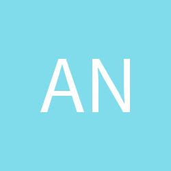 Anshi