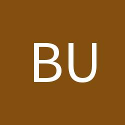Bureaucratist