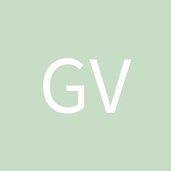 GVRone