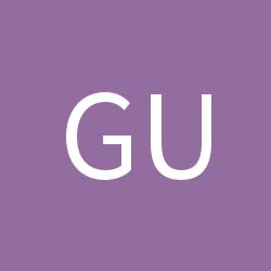 Guazir