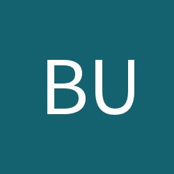 bud01